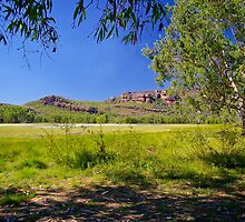 Anbangbang Billabong, Kakadu, Northern Territory by fotosic