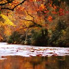 *Fall on the Davidson River* by DeeZ (D L Honeycutt)