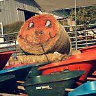 Plumper Pumpkins by kelseapinkston