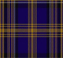 00461 Blue Matheson Hunting Tartan Fabric Print Iphone Case by Detnecs2013