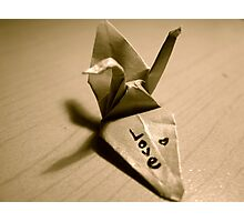 Origami Love Photographic Print