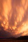 Heaven Descending by Arla M. Ruggles
