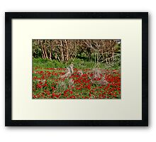 Natural Bouquets Framed Print