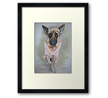 German Shepherd 2 Framed Print