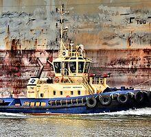 Svitzer Meringa Tug - Newcastle Harbour NSW Australia by Bev Woodman