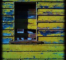 A certain slant of light by Colleen Milburn