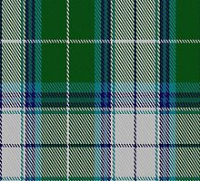 00467 The Blue Spruce Fashion Tartan Fabric Print Iphone Case by Detnecs2013