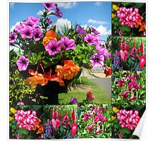 Pink Delight - Summer Flowers Collage Poster