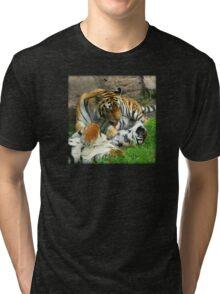 Grooming Tigers Tri-blend T-Shirt