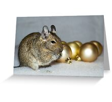 Degu Baubles Greeting Card