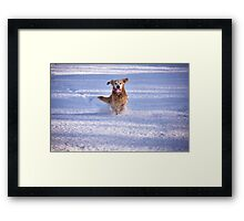 Joy unlimited Framed Print