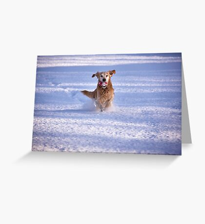 Joy unlimited Greeting Card