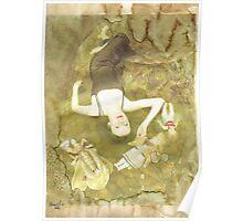 Pinocchio (Pretty porcelain skin) Poster