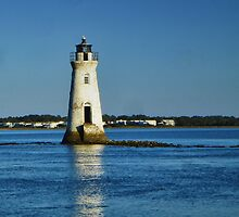 Cockspur Island Lighthouse by Penny Rinker