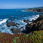Cambria by Mike Herdering