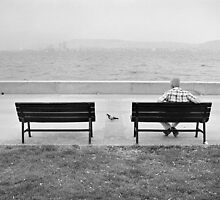 The Pigeon and The Man by Ilker Goksen