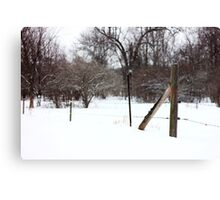 Snowy Afternoon Canvas Print
