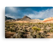 Along The Red Rock Canyon Range Canvas Print
