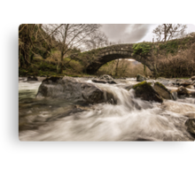 Fast Flowing. Canvas Print