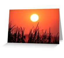 As the Sun Sets 2 Greeting Card