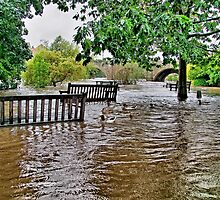 Floods Wetherby West Yorkshire - HDR by Colin J Williams Photography