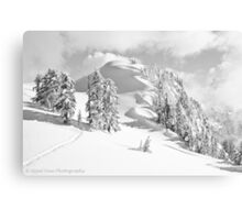 Snow Waves Canvas Print