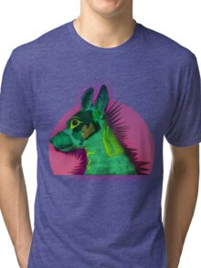 Tilda the best dog Tri-blend T-Shirt
