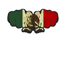 Mexico! by ONE WORLD by High Street Design