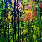 forest light by agnès trachet