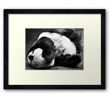 Even Pandas Have Bad Days Framed Print
