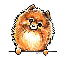 Red Pomeranian Paws Up by offleashart