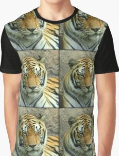 Winking Tiger Graphic T-Shirt