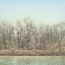 Winter Time by DottieDees