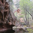 Oak Creek Canyon by Andrew Hogarth