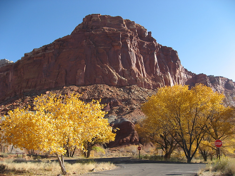 Fall at Capitol Reef National Park by Andrew Hogarth