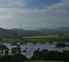 Valley View in flood by Liz Worth