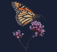 Monarch tee2 by hummingbirds