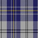 00496 MacPherson Dress Blue (Dance) Clan Tartan Fabric Print Iphone Case by Detnecs2013
