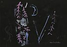 Midnight Garden cycle16 16 by John Douglas