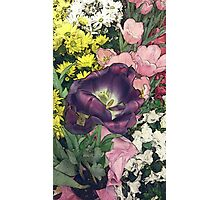 grocery store flowers Photographic Print