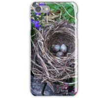 Bird nest in the garden with eggs iPhone Case/Skin