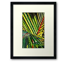 Palm Fronds Framed Print