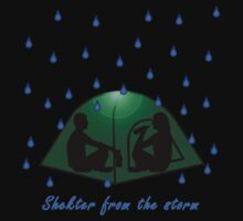 Shelter From The Storm by Eirys