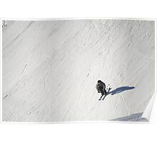 Skiing Fun Poster