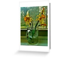 Daffodils In The Window Sill Greeting Card
