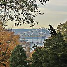 The Tappan Zee by Jane Neill-Hancock