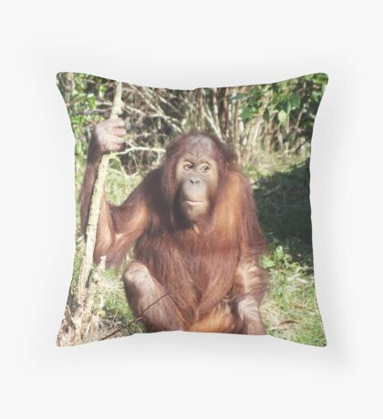 Innocent Until Proven Guilty Throw Pillow