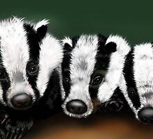 Badger Badger Badger by Sookiesooker