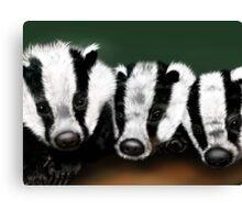 Badger Badger Badger Canvas Print