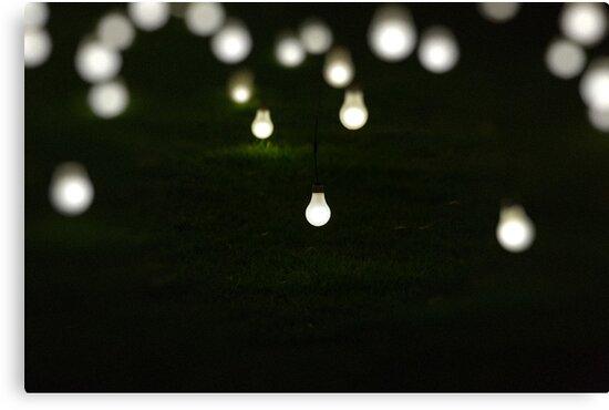 Light Display Art - King's Park Botanical Garden, Perth by Sandra Chung